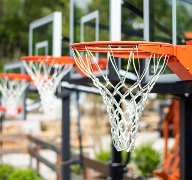 Backyard toys: Basketball hoops