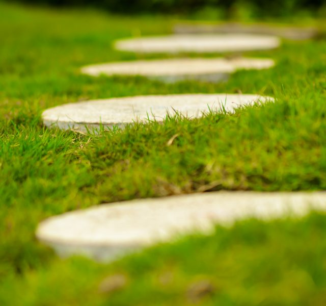 Stepping stones on lawn